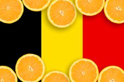 Belgium flag in citrus fruit slices horizontal frame. Belgium flag in horizontal frame of orange citrus fruit slices. Concept of growing as well as import and stock images