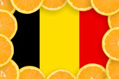 Belgium flag in fresh citrus fruit slices frame. Belgium flag in frame of orange citrus fruit slices. Concept of growing as well as import and export of citrus stock images