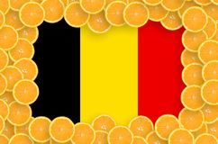 Belgium flag in fresh citrus fruit slices frame. Belgium flag in frame of orange citrus fruit slices. Concept of growing as well as import and export of citrus royalty free illustration