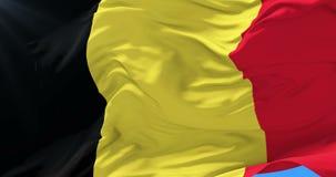 Belgium flag waving at wind in slow with blue sky, loop. Belgian flag waving at wind in slow with blue sky, loop stock video
