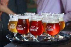 BELGIUM; NEERIJSE - SEPTEMBER 05; 2014: Tasting different beers royalty free stock photos