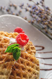Belgium waffle topped with chocolate topping, whipped cream and fresh raspberries on top, product photography with flower Royalty Free Stock Images