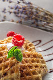Belgium waffle topped with chocolate topping, whipped cream and fresh raspberries on top, product photography with flower.  Royalty Free Stock Images