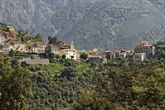 Belgodere山村在Nebbio地区,可西嘉岛,法国, 免版税库存图片