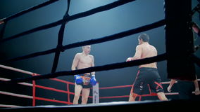 Belgorod, Russia - 22 October 2016: Athletes fighters in the ring mixed martial arts competition tournament series stock footage