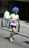 Belgrad-Marathon 2014 stockfotos