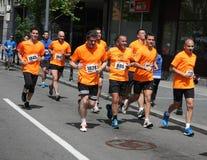 Belgrad-Marathon 2014 stockbilder