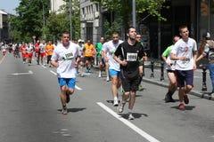 Belgrad-Marathon 2014 lizenzfreies stockbild