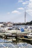 Belgrade - Łódkowaty Marina Na Sava rzece Z mostem Nad Adal pilonem Zdjęcia Stock