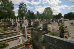Belgrade Kid cemetery Royalty Free Stock Photo