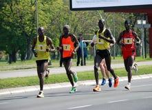 Belgrade marathnon konkurenci Zdjęcia Stock