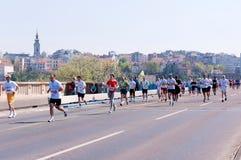 Belgrade marathon Royalty Free Stock Photography