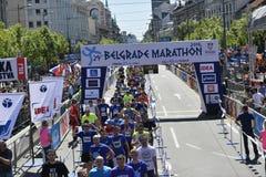 Belgrade Marathon, Serbia Royalty Free Stock Photo