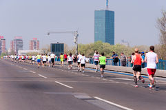 Belgrade maraton Royaltyfria Bilder