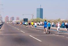 Belgrade maraton Royaltyfria Foton