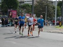 Belgrade maraton 2014 Zdjęcia Stock