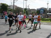Belgrade maraton 2014 royaltyfri fotografi