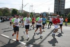 Belgrade maraton 2014 Obrazy Stock