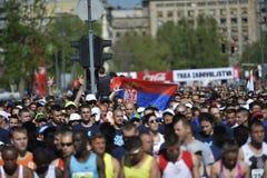Belgrade maraton, Serbia Obrazy Royalty Free