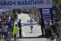 Belgrade maraton, Serbien Royaltyfri Foto
