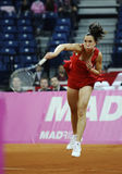 Tennis player Jelena Jankovic serves the ball during a tennis match Stock Images