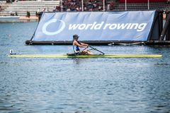 Greek athlete on a World Rowing Cup Competition rowing stock image