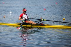 Hungarian athlete on a World Rowing Cup Competition rowing stock image