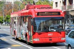 De trolleybus van Belgrado stock fotografie