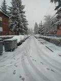 Belgrado sotto neve fotografia stock libera da diritti