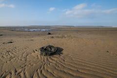 Belhaven海湾起波纹的沙子 库存照片