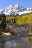 Belhi ed insenatura marrone rossiccio in autunno - verticale Fotografia Stock