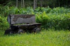 Beli ławka w lesie Zdjęcia Royalty Free