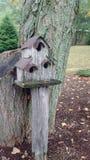 Beli domek na drzewie Obrazy Royalty Free