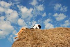 beli pola siana lato kobieta Zdjęcia Stock