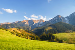 Belianske Tatra山 库存图片