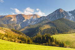 Belianske Tatra Mountains, Slovakia. View of the Belianske Tatra Mountains, Slovakia Stock Photography