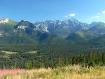 Belianske Tatra in Slovacchia Fotografie Stock Libere da Diritti