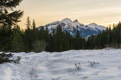 Belianske Tatras di mattina visto dallo schiarimento Fotografie Stock Libere da Diritti