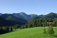 Belianske Tatras Royalty Free Stock Photo