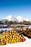 Belianske Tatry, Slovakia Stock Photos