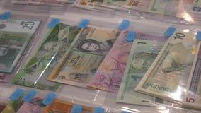 Belice, Barbados, billetes brasileños y muchos otros billetes de banco del mundo almacen de video