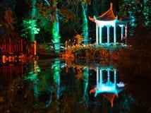 Belichteter Wald nachts Stockbild