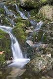 Belichtungs-Landschaftsbild des Wasserfalls langes im Sommer im Waldpflasterstein Stockfotografie