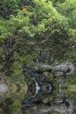 Belichtungs-Landschaftsbild des Wasserfalls langes im Sommer im Waldpflasterstein Lizenzfreie Stockfotos