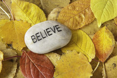 Believe Rock with Fall Leaves Stock Photos