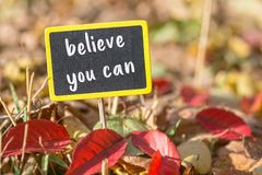 Believe you can sign. Believe you can wooden black sign in autumn leaves , motivation concept stock photo
