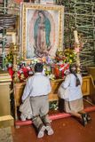 Believers pray to the image of the Virgin of Guadalupe. Stock Images