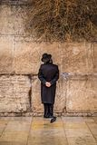 Believing pray near the wall of crying in a black hat. Believing pray near the wall of crying in a big black hat royalty free stock image