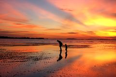 Belitungs-Sonnenuntergang - Sie ` ll gehen nie allein 2 stockbilder
