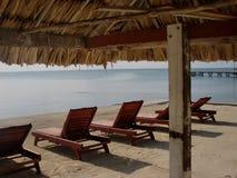 Belize caribean strand Royaltyfria Foton